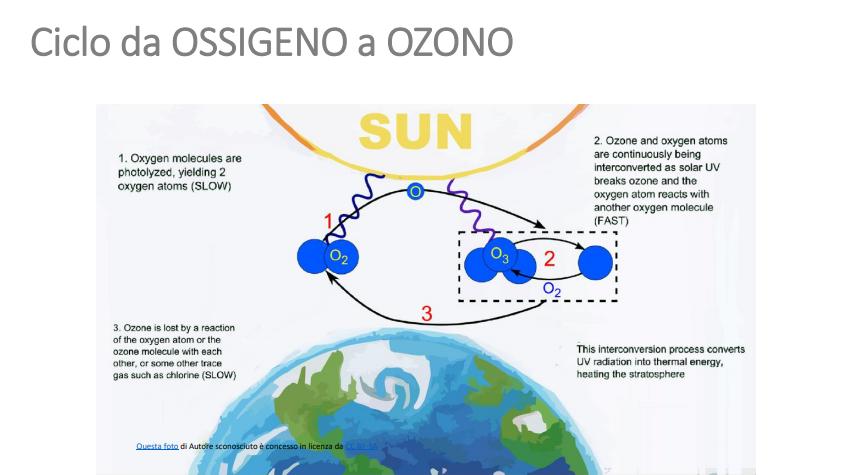 ciclo da ossigeno a ozono